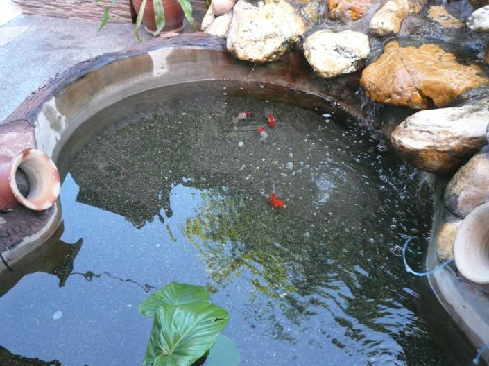 Eco Aquas @ Kajang Utama