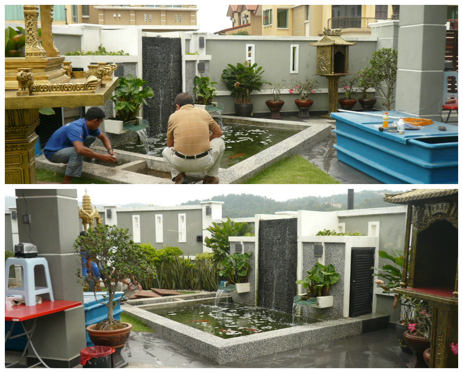 Aquatic paradise koi pond rectification sg long for Koi fish pond design in malaysia