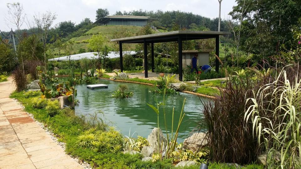 Kechara Pond